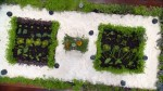 Heston's Edible Garden