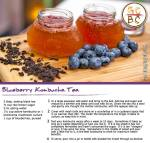 Blueberry Kombucha Tea (Zoe Bingley-Pullin)