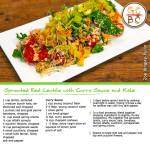 Sprouted Red Lentils with Curry Sauce and Kale (Zoe Bingley-Pullin)