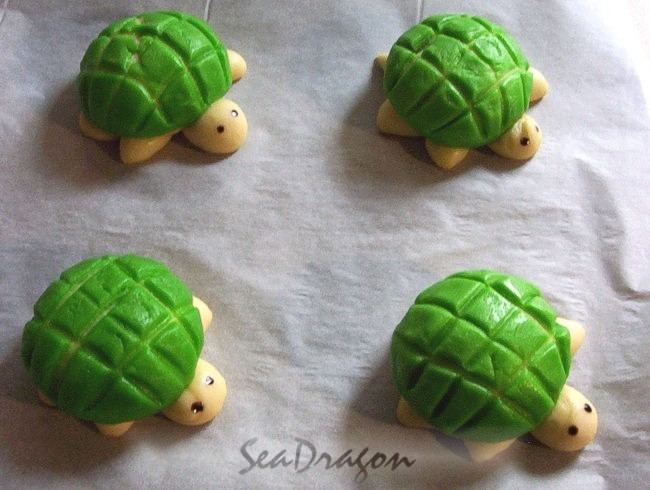 turtle_melonpan05