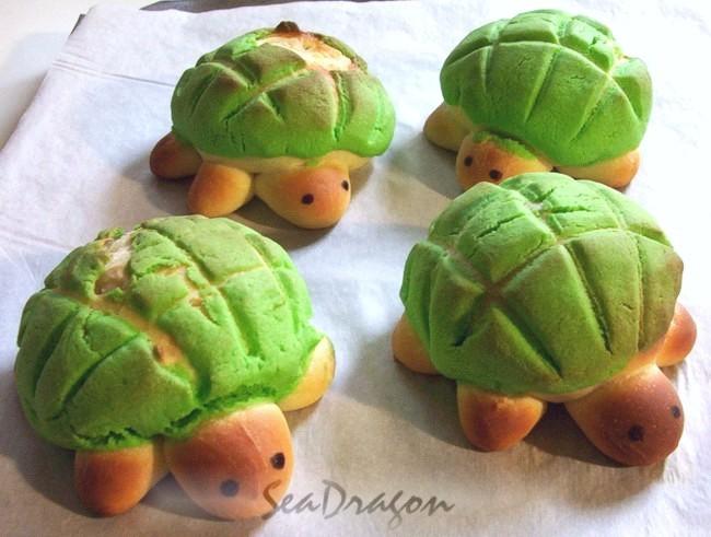 turtle_melonpan06