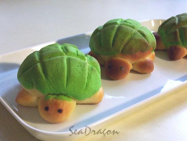 turtle_melonpan12