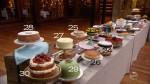 mca8e21_cakes4